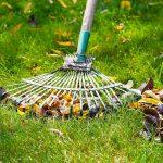 Čas je za sejanje trave!